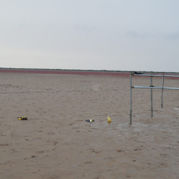Tilt Current Meter and other instruments deployed on the Yellow River Delta. Photo by: Brandee Carlson