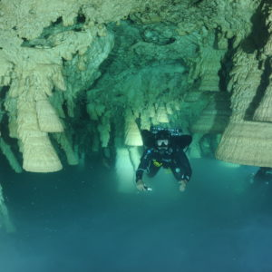 A look at the underwater cave. Photo by: D. Brankovits and J. Pohlman.