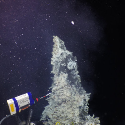 Logger on Hydrothermal Vent. Credit: D. Fornari and T. Barreyre
