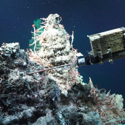 Logger on Hydrothermal Vent System.  Photo by D. Fornari and T. Barreyre.